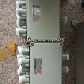 FJX-10/20现场防水防尘防腐接线箱