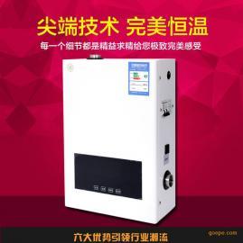 馨普电采暖炉 电壁挂炉 电锅炉 家用采暖地暖暖气片专用 厂家直销