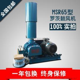MSR65三叶罗茨鼓风机适用于污水处理水产养殖气力输送等