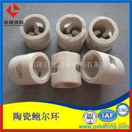 优质陶瓷鲍尔环 高效陶瓷鲍尔环 首选萍乡科隆牌