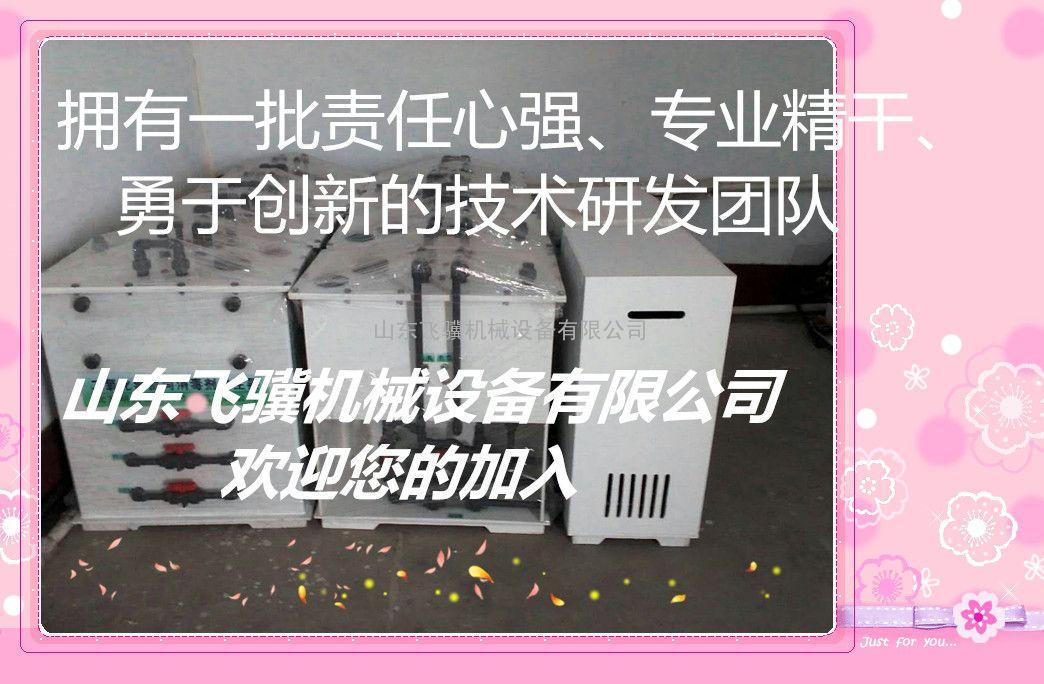 飞骥牌电解食盐二氧化氯发生器工作原理