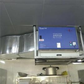 珠海酒店油烟净化工程-餐饮油水分离器|静电油烟净化器 天朗
