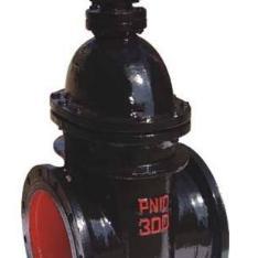 Z45T铸铁暗杆楔式闸阀
