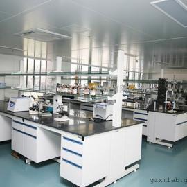 全钢实验台,华南地区全钢实验室家具加工中心