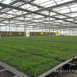 温室种花专用网¥温室种花专用网直销价格¥温室种花专用网厂商