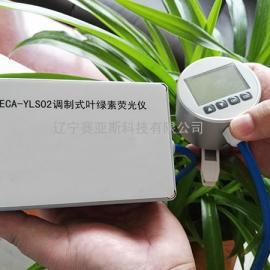 叶绿素荧光仪ECA-YLS02