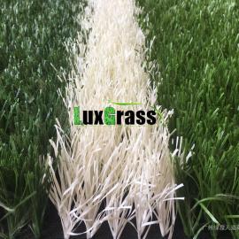 广州绿霞专业生产足球场人造草坪 填充型人造草