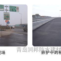 RBS沥青路面养护涂料