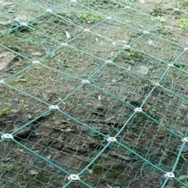 工业隧道落实防护安全网 专用山区护坡网 SNS被动防护网