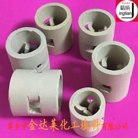 陶瓷鲍尔环填料哪家质优价廉 萍乡金达莱