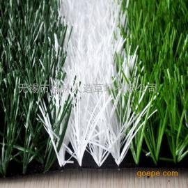 仿真草坪人造草坪塑料假草坪地毯幼儿园人工草皮楼顶阳台足球场