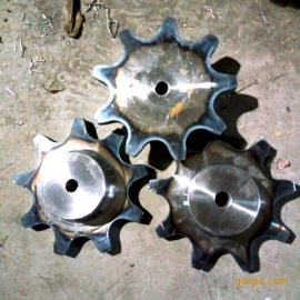 C2042链轮 现货链轮 孔径可加工 传动链轮 不锈钢链板