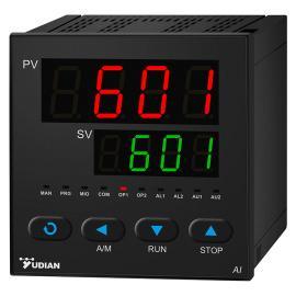宇电AI-6010型交流电压测量仪