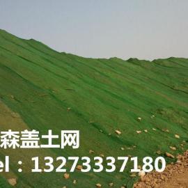 塑料篷布 绿色塑料盖土网
