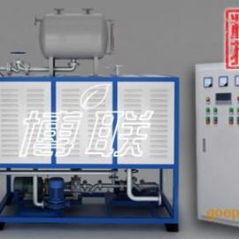 廊坊大城电加热导热油炉效率高