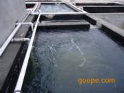 城市污水处理工程 生活污水处理设备