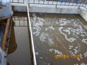生活污水处理厂家 配套专业生活污水处理设备
