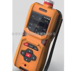FS-200便携式氢气检测仪