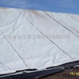 短丝600g土工布_600g土工布、HDPE土工膜报价