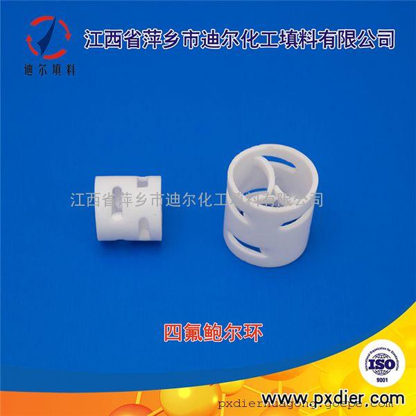 四氟PTFE鲍尔环填料现货 萍乡迪尔厂家