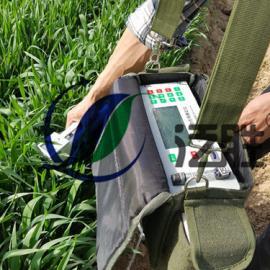 玉米光合作用测量仪
