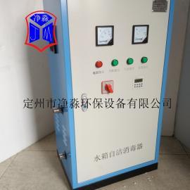 小区供水用外置式水箱自洁消毒器SCII-10HB臭氧发生器