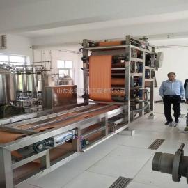 淀粉污水处理设备 淀粉厂污水治理