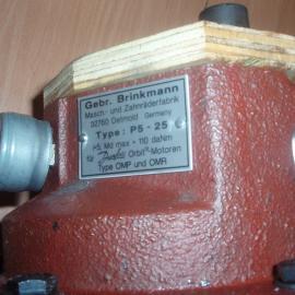 BRINKMANN\德国 BRINKMANN\德国布曼泵