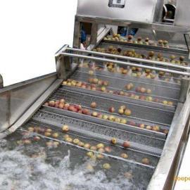 供应优质果蔬清洗机气泡洗菜机全自动气泡蔬菜清洗