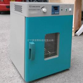 立式恒温鼓风干燥箱DHG系列