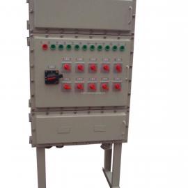 BXX防爆动力检修箱主回路带塑壳开关