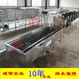 诸城明超 多功能洗菜机 全自动蔬菜气泡喷淋式清洗机厂家