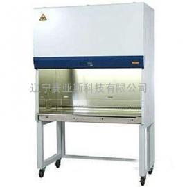 生物安全柜BHC-1000IIB2