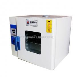 工业热风烤箱 高温试验机DYY-40A