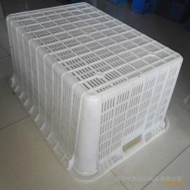 祺博塑料筐安阳周转箱厂家直销各型号蔬菜框食品筐饮料筐