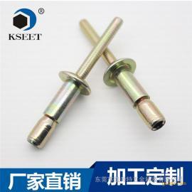 东莞厂家供应外锁拉丝铆钉6.4*28.6 SK-8120-UG
