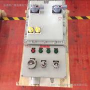 BXX-T防爆动力检修箱
