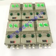 防爆动力配电箱BXD51-2/10A