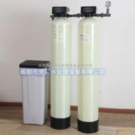 四川地下井水过滤器 地下水除铁锰 井水除垢过滤器