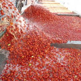 番茄汁饮料成套生产线