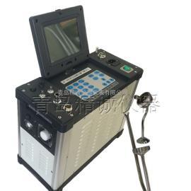 JH-60E厂家直销烟尘采样器 烟尘气测试仪