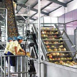 全套果汁饮料生产线加工设备