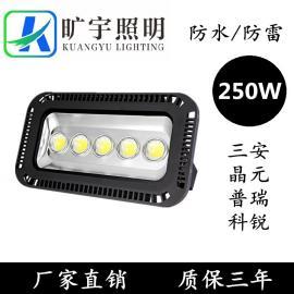 户外防水LED高杆灯250W