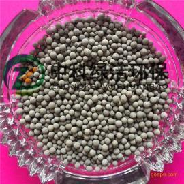 陶粒滤料 各种生物滤池专用高效挂膜陶粒滤料 中科绿洁
