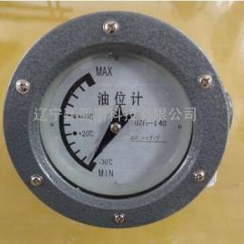 油位计UZB2-250