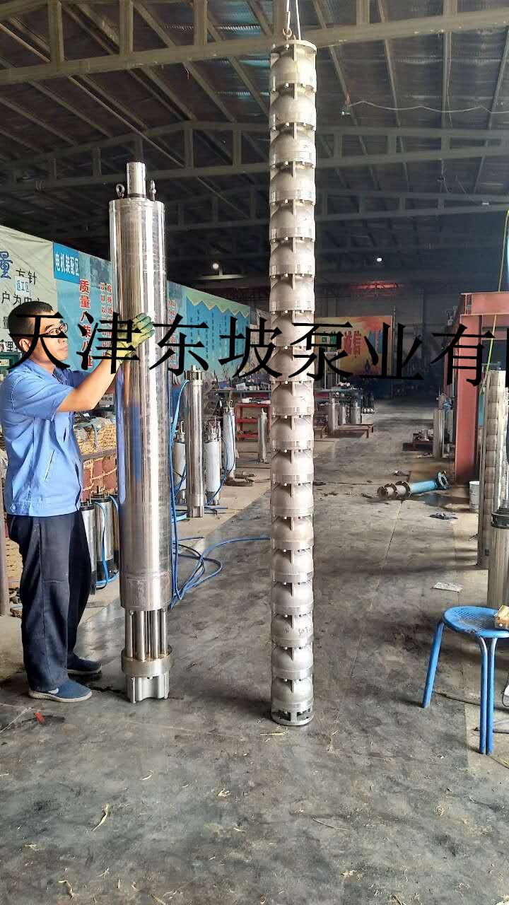 东坡不锈钢潜水泵厂家,价格实惠,服务周到