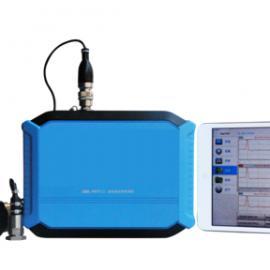 RSM-PRT(S)桩基动测仪