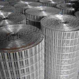 天水1/2孔镀锌电焊网厂家-50-100丝墙体防裂铁丝网