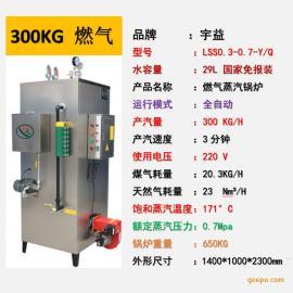 宇益天燃气蒸汽发生器300KG液化气煤气工业节能小型锅炉