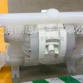 P100/KKPPP/TNU美国进口威尔顿隔膜泵库存商